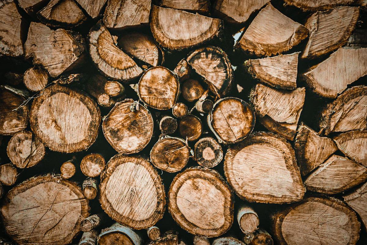 La Roche Couloir tas de bois par Cécile Bellu